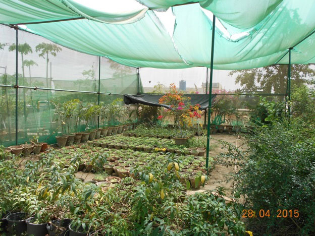 Aviation Enclave (Nursery)